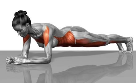 los mejores ejercicios de abdominales isométricos